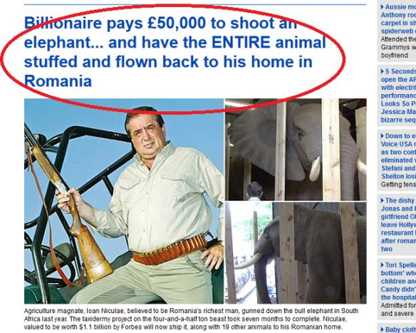 Nu e glumă, e poveste reală! Ioan Niculae a ajuns pe primele pagini ale ziarelor europene (aici, captură din cotidianul britanic Daily Mail) cu o poveste extravagantă: la o vânătoare în Africa, a împușcat un elefant, după care a plătit 50.000 de euro pentru împăierea și aducerea lui în România, ca să-l expună ca trofeu pe una din proprietățile sale… Vă dați seama că și niște africani amărâți vor rămâne fără locuri de muncă în urma deciziei hainei Justiții românești?!…